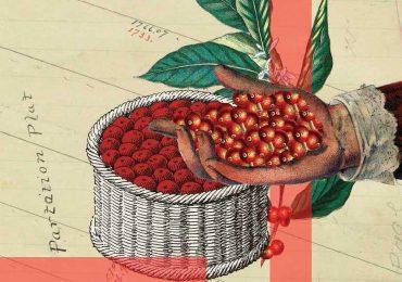 Mastercard quiere bancarizar a productores de café | Ilustración: Alfredo Quintana