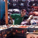 Vendedor de jitomate | Foto: Carlos Aranda