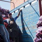 Los trabajadores de las bodegas de la CEDA cobran en efectivo | Foto: Carlos Aranda