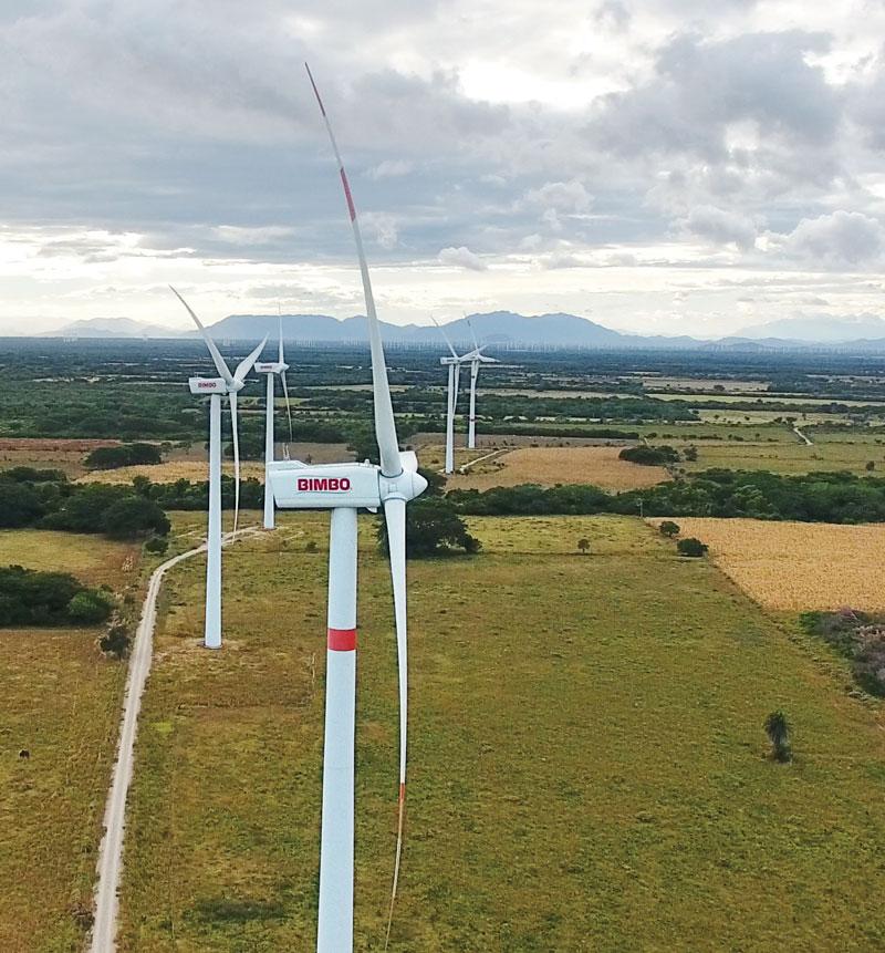 En 2025, el parque eólico Piedra Larga, en Oaxaca, abastecerá la electricidad de todos los centro de trabajo de Bimbo | Foto: Cortesía Bimbo
