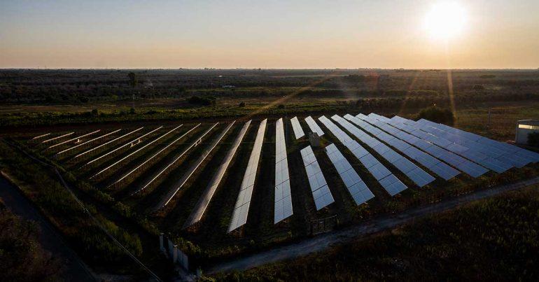 Planta solar | Foto: Getty Images